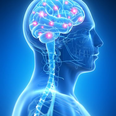 Das Gute im Gehirn verankern