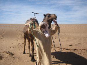 Marokko-Berber-web