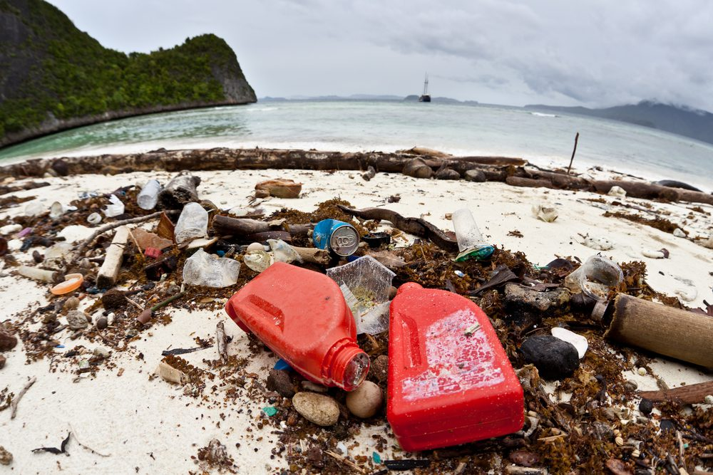 Müllfrei leben