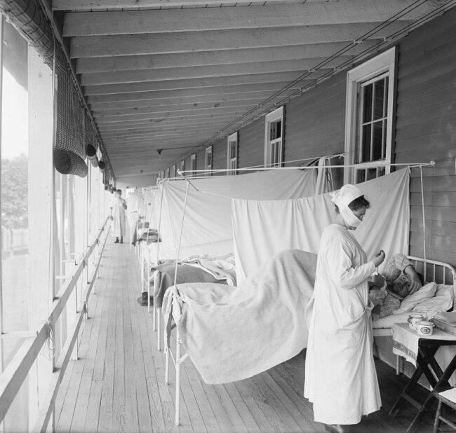"""""""Die Corona-Pandemie ist vergleichbar mit der Spanischen Grippe"""""""
