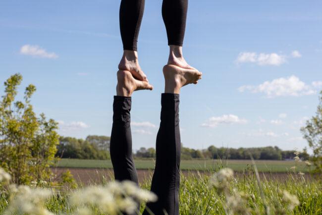 Tugenden verschaffen seelische Balance