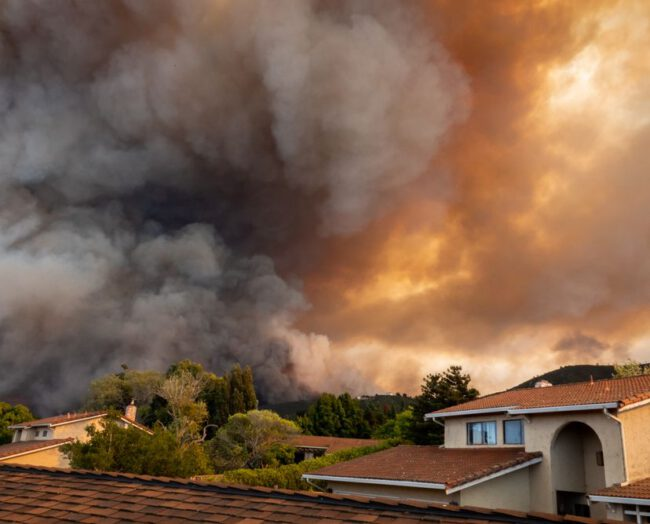 Klimakrise: Wenn unser Haus brennt, haben wir keine Wahl